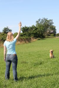 Jaktapportering - Stoppsignal med handtecken
