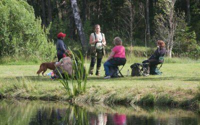 Årets stora fest: Sommarläger på Sjöön