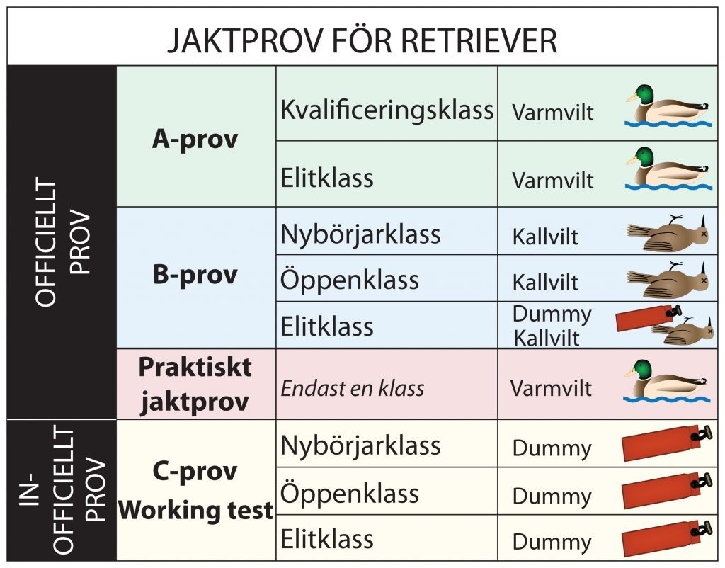 Jaktprovsklasser för retriever