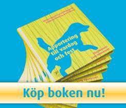 Köp boken nu!