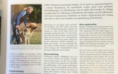 Aha-upplevelser i Värmland