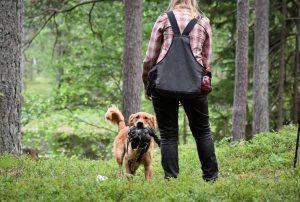 På väg in Foto: Hanna Nilsson, http://www.kennelblagul.se/