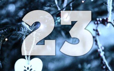 Lucka 23: Vinn Valpträning till vardag och fest som e-bok