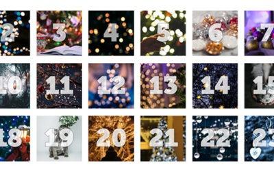 Det blir en julkalender hos Apportering till vardag och fest i år!